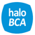 Call Halo BCA